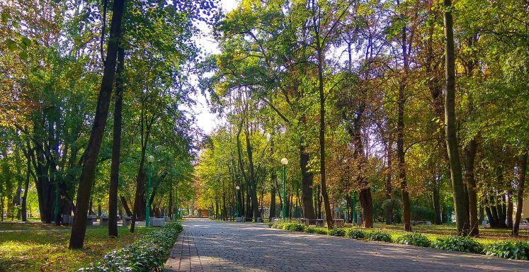 Парковая зона поражает разнообразием зеленых насаждений