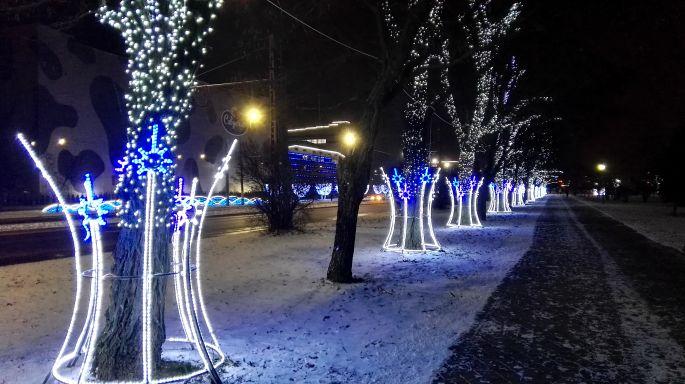 Пешеходная аллея в парке Мира